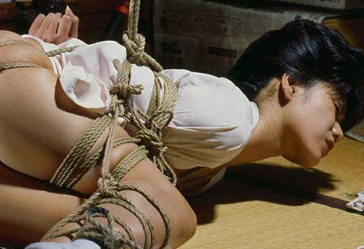 Japanese Bondage Guide 54